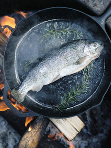 Fish in a frying pan over an outdoor fire.の写真素材 [FYI02857820]