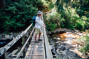 Man walking across small foot bridge in lush temperate rainforest in Oregonの写真素材 [FYI02857904]