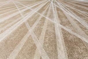 Tire tracks on the dry surface of the Black Rock Desert.の写真素材 [FYI02857998]
