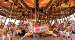 Merry-go-round ride in amusement parkの写真素材 [FYI02858078]