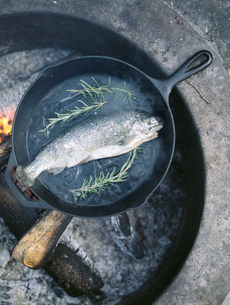 Fish in a frying pan over an outdoor fire.の写真素材 [FYI02858093]