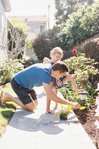 Father and daughter in a garden, planting a flower.の写真素材 [FYI02858140]
