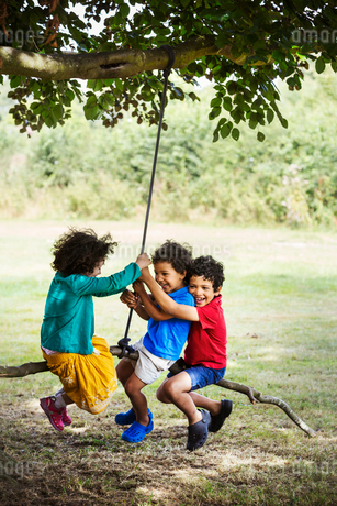 Two boys and a girl sitting on a tree swing.の写真素材 [FYI02858276]