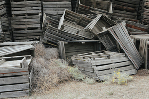 Pile of old and discarded wooden fruit crates, boxes for apple harvestの写真素材 [FYI02858290]