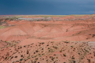Elevated view of the Painted Desert rock formations in the Petrified Forest National Parkの写真素材 [FYI02858317]
