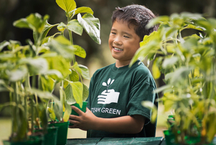 A boy with young plants in a plant nursery.の写真素材 [FYI02858333]