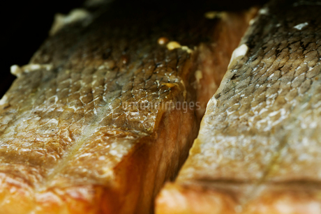 Close up of fish fillets on a rack in a fish smoker.の写真素材 [FYI02858370]