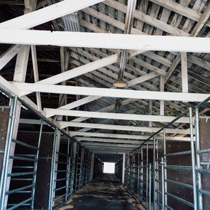 The interior of a cow barn at Ellensburg fairground.の写真素材 [FYI02858375]