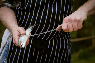 Close up of a chef filleting a fresh fish.の写真素材 [FYI02858422]
