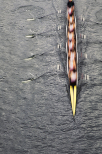Overhead view of men rowing scull boat during competition on the water off shore in Seattle.の写真素材 [FYI02858540]
