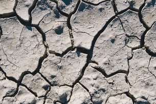 Close up of cracked earth, Black Rock Desert, Nevadaの写真素材 [FYI02858643]