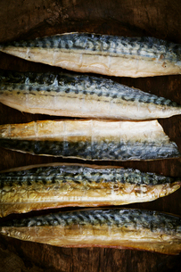 Smoked fish fillets laid out in a row.の写真素材 [FYI02858648]