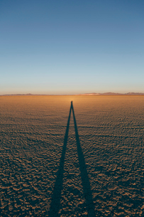 Man standing on Black Rock Desert Playa at dusk, casting long shadow, Nevadaの写真素材 [FYI02858678]