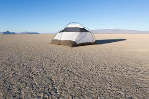 Camping tent on vast playa, Black Rock Desert, Nevadaの写真素材 [FYI02858738]