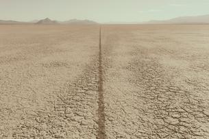 Single tire track on playa, Black Rock Desert, Nevadaの写真素材 [FYI02858784]