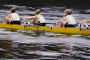 Abstract of female crew racers rowing scull boat during competition, Seattle, Washington.の写真素材 [FYI02858823]