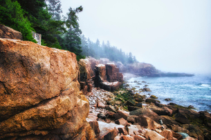 Acadia National Park in Maine. Coastline, stony beaches and pine forests.の写真素材 [FYI02858888]