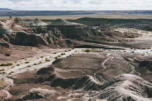 The landscape of the Painted Desert and valley in the Petrified Forest National Parkの写真素材 [FYI02858970]