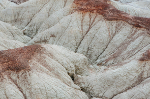Elevated view of the Painted Desert rock formations in the Petrified Forest National Parkの写真素材 [FYI02859056]