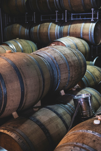 Oak wine barrels in a winery.の写真素材 [FYI02859157]