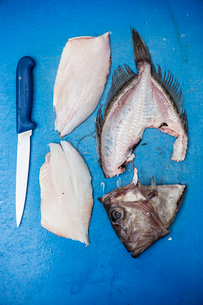 High angle close up of filleted John Dory fish and knife on blue chopping board.の写真素材 [FYI02859205]
