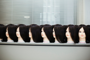 Large group of mannequin heads with brown wigs in a row on a table.の写真素材 [FYI02859389]