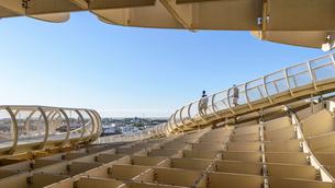 Metropol Parasol, a curved wooden parasol structure, modern architecture in La Encarnacio Square, Seの写真素材 [FYI02859617]