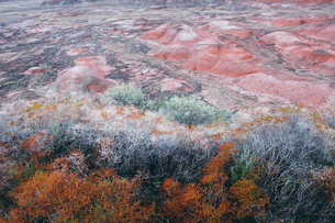 Elevated view of the Painted Desert rock formations in the Petrified Forest National Parkの写真素材 [FYI02859646]