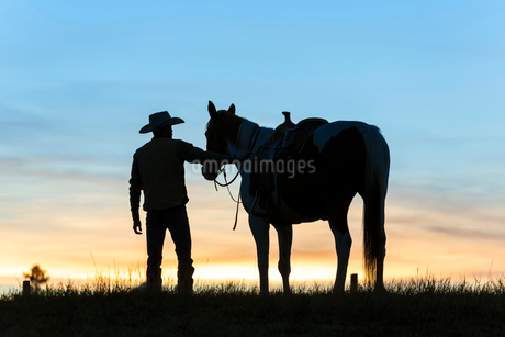 Cowboy standing next to his horse in a Prairie landscape at sunset.の写真素材 [FYI02859658]