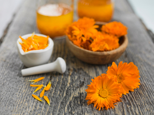 Various stages of processing calendula flowersの写真素材 [FYI02859675]