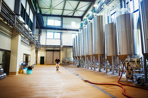 Interior view of a brewery with a row of metal beer tanks.の写真素材 [FYI02859693]