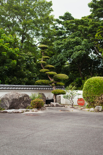 Garden of a Japanese Buddhist temple with rocks and trees.の写真素材 [FYI02859754]