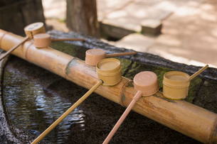 Close up of bamboo water hand washing basins at Shinto Sakurai Shrine, Fukuoka, Japan.の写真素材 [FYI02859795]