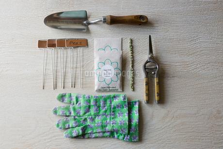 Overhead still life gardening gloves and equipmentの写真素材 [FYI02860098]