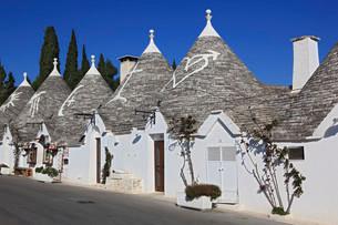 Trulli, houses with round stone roofs, Alberobello, Apuliaの写真素材 [FYI02860761]