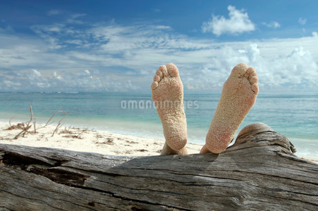 Woman lying on the beach feet up on a tree trunk, Denisの写真素材 [FYI02860782]