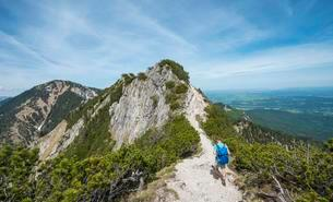 Hiker on trail, Herzogstand-Heimgarten ridge walkの写真素材 [FYI02860841]