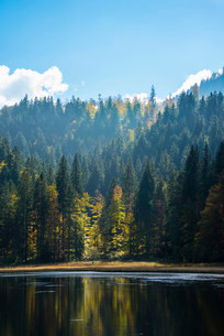 Lake Spitzingsee with autumn forest, Upper Bavariaの写真素材 [FYI02860848]