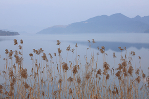 Zhejiang Province;Chinaの写真素材 [FYI02860856]
