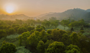 Morning in Shancunの写真素材 [FYI02861079]