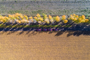 Birds eye view of the fallow ground in Lesser Khinganの写真素材 [FYI02861080]