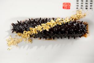 Golden sea cucumberの写真素材 [FYI02861191]