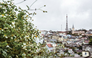 Beautiful scenery of Dalatの写真素材 [FYI02861252]