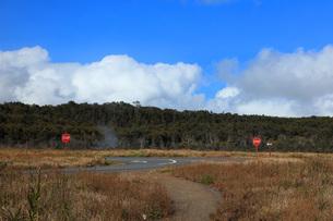 ハワイ島 キラウエア火山 スチームベントの写真素材 [FYI02861330]