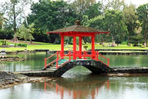 ハワイ島ヒロのリリウオカラニ公園の写真素材 [FYI02861350]