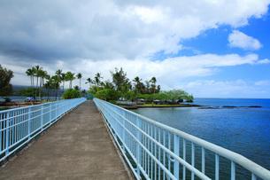 ハワイ島ヒロのココナッツアイランドの写真素材 [FYI02861384]