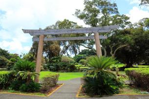 ハワイ島ヒロのリリウオカラニ公園の写真素材 [FYI02861391]