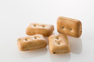 白バックの乾パンの集合の写真素材 [FYI02861397]