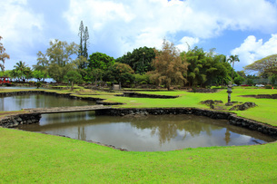ハワイ島ヒロのリリウオカラニ公園の写真素材 [FYI02861408]