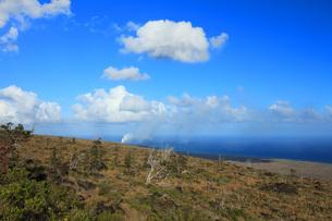 ハワイ島 キラウエア火山チェーン・オブ・クレーターズ・ロードからのオーシャンエントリーの噴煙の写真素材 [FYI02861429]